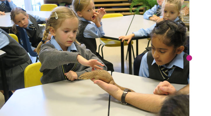 animalencounters-educationsmall1